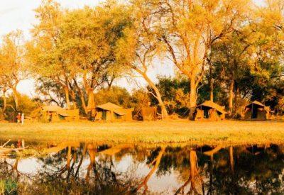 BOTSWANA LODGE SAFARIS