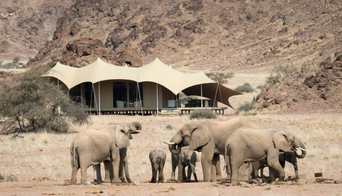 Hoanib Skeleton Coast Camp, Elephant