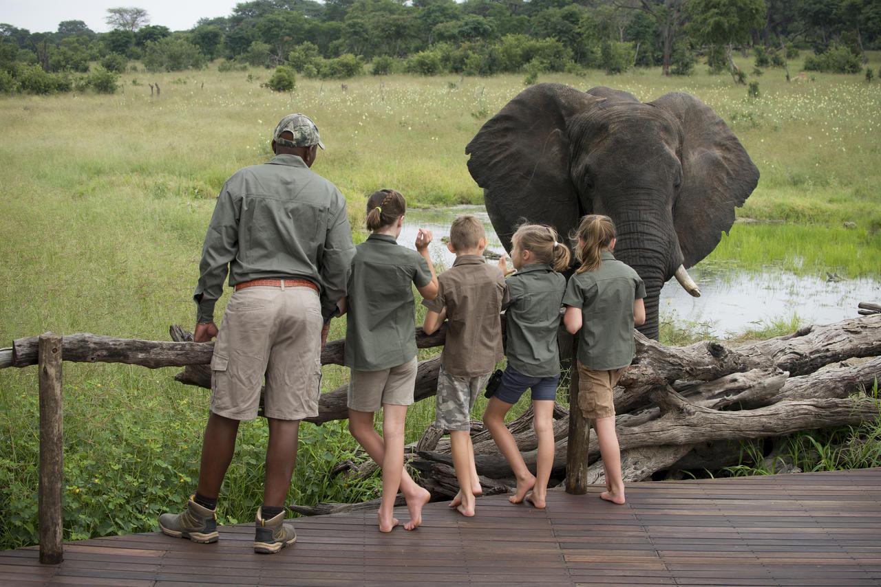 Family safari, Zimbabwe8