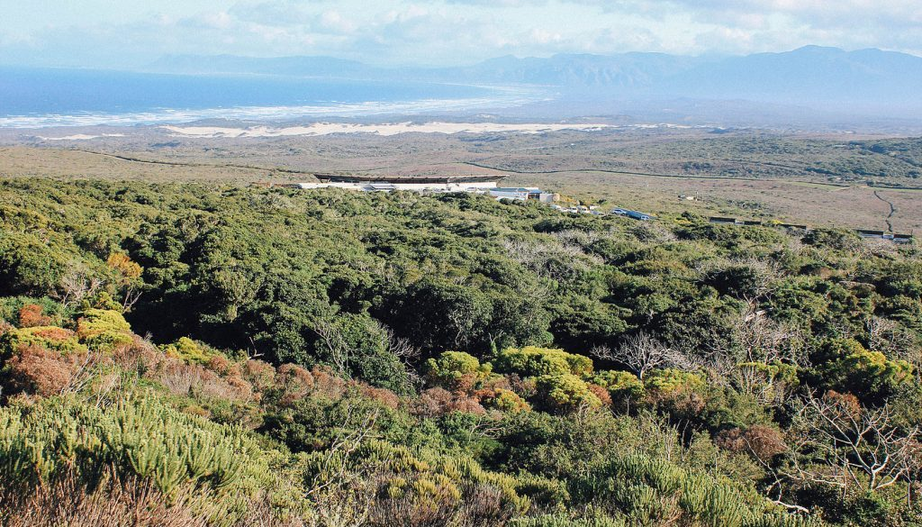 Grootbos forest lodge12