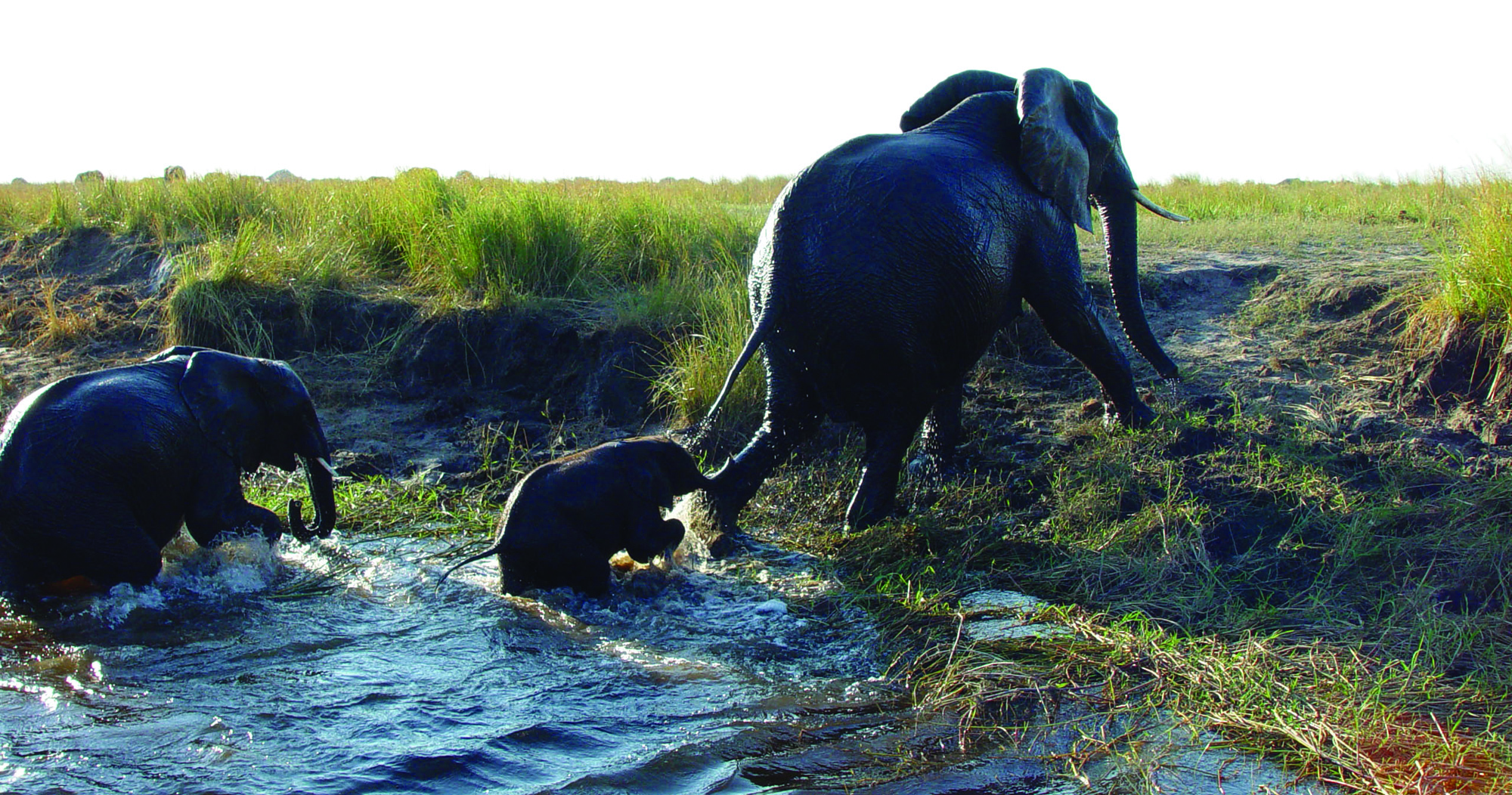 Botswana Travel Information