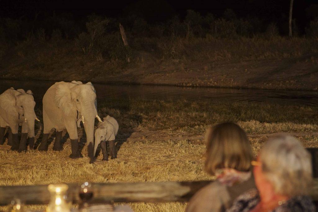 Made in Africa Tours & Safaris - Botswana Family Lodge Safari - Savuti Safari Lodge Elephants at Dinner