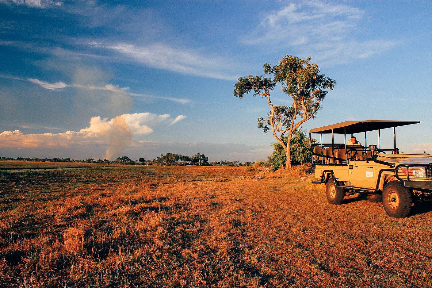 Okavango delta safari6