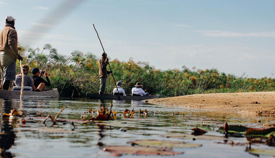 Okavango delta safari9