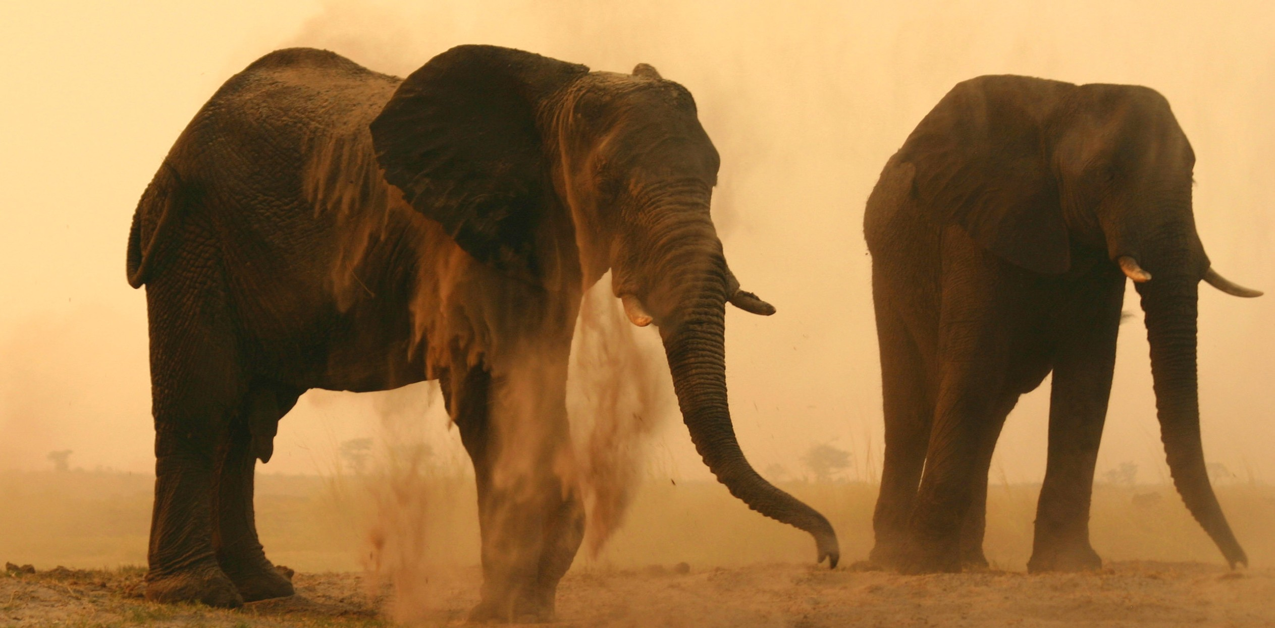 NAMIBIA EXPLORATION