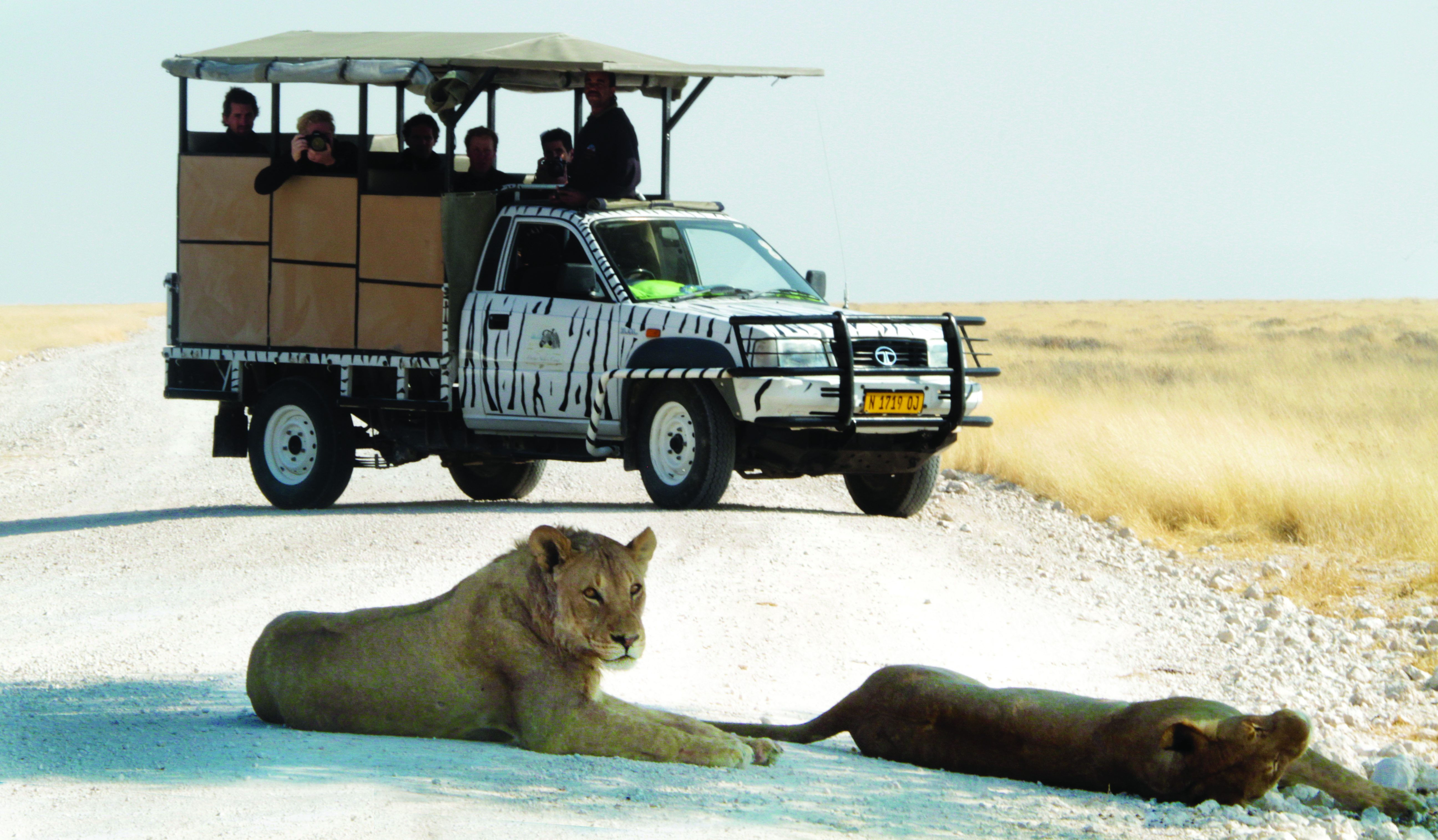 BIG FIVE NAMIBIA SELF DRIVE SAFARI