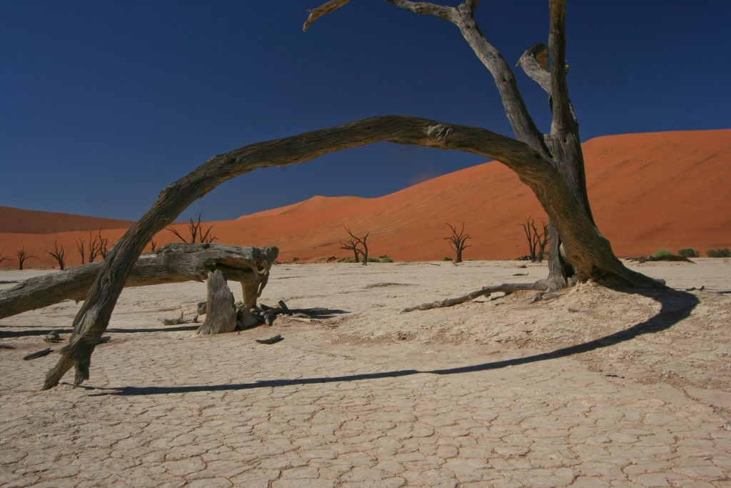 Deadvlei - Cape to Vic Falls Adventure Safari