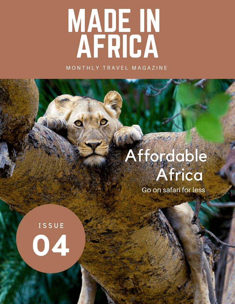 Budget-Friendly African Safari Travel Guide