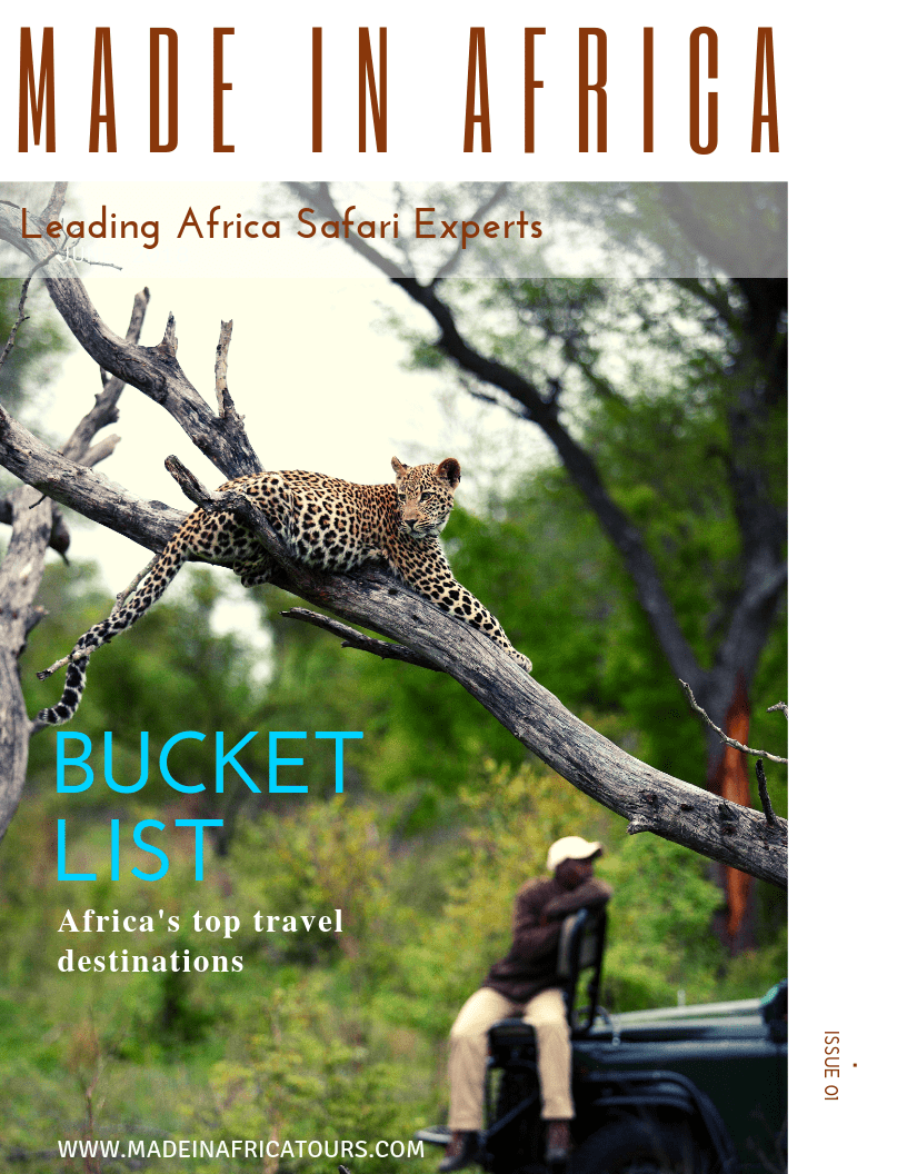 Africa Safari Travel Magazines