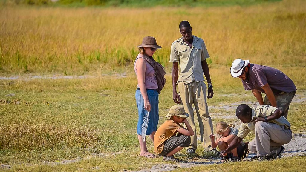 Botswana-Private-Reserve-Lodge-Safari---Oddballs-Bush-Walk-with-kids - Copy