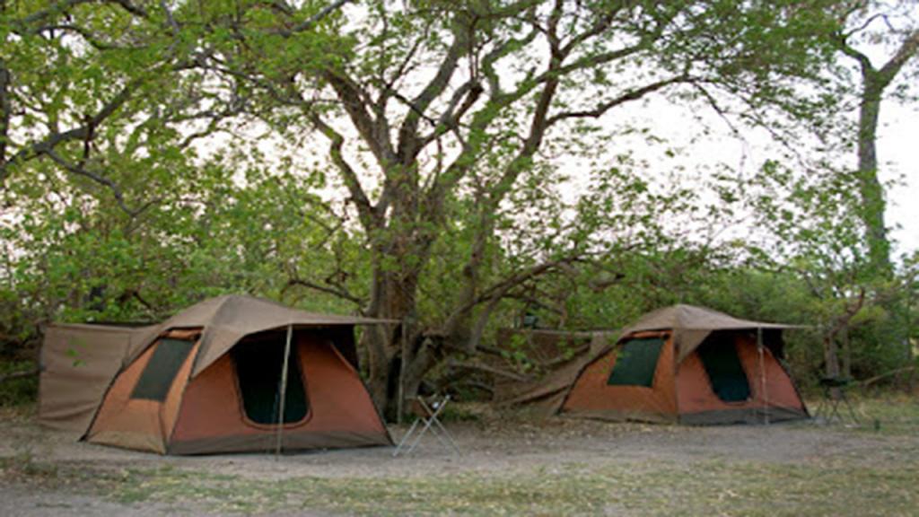 Classic-Botswana-Mobile-Safari---tents-in-campsite