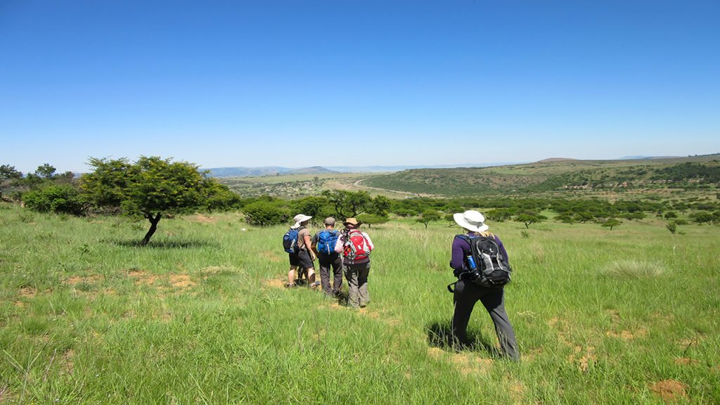 Made in Africa Tours & Safaris - Walking South Africa (9)
