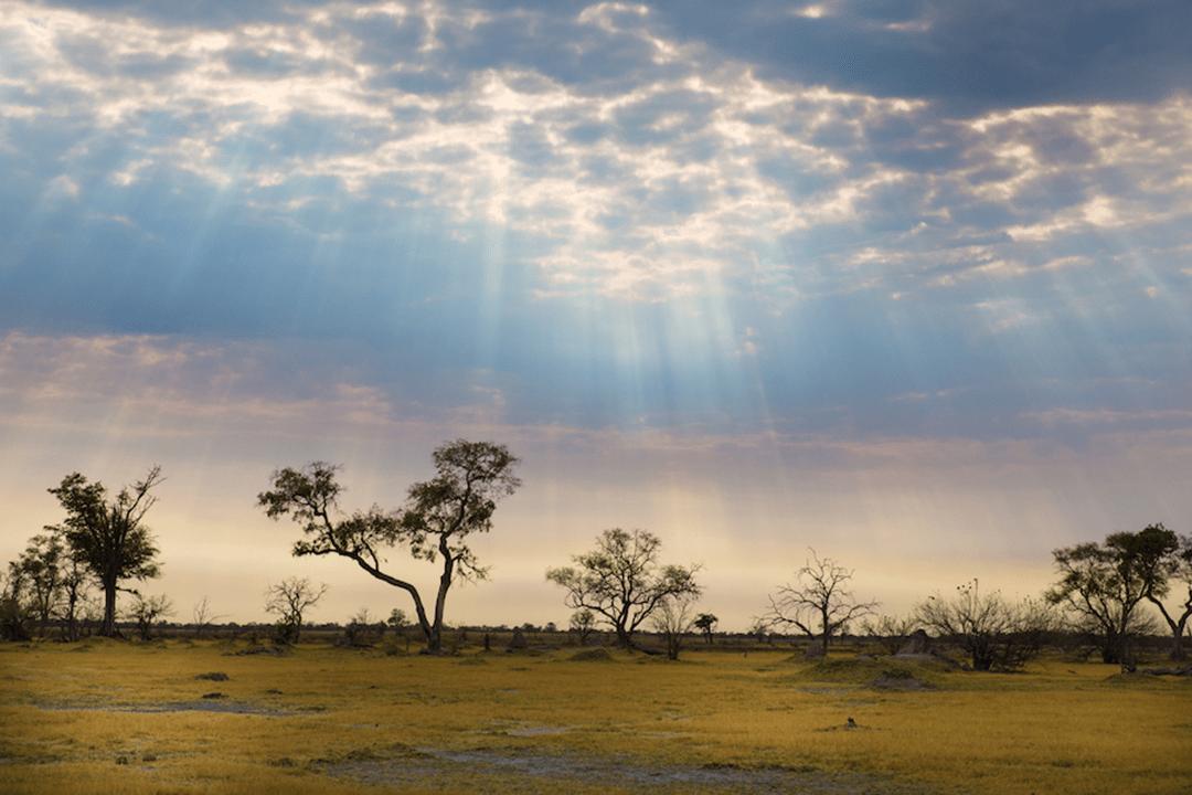 BOTSWANA HIGHLIGHTS CAMPING SAFARI