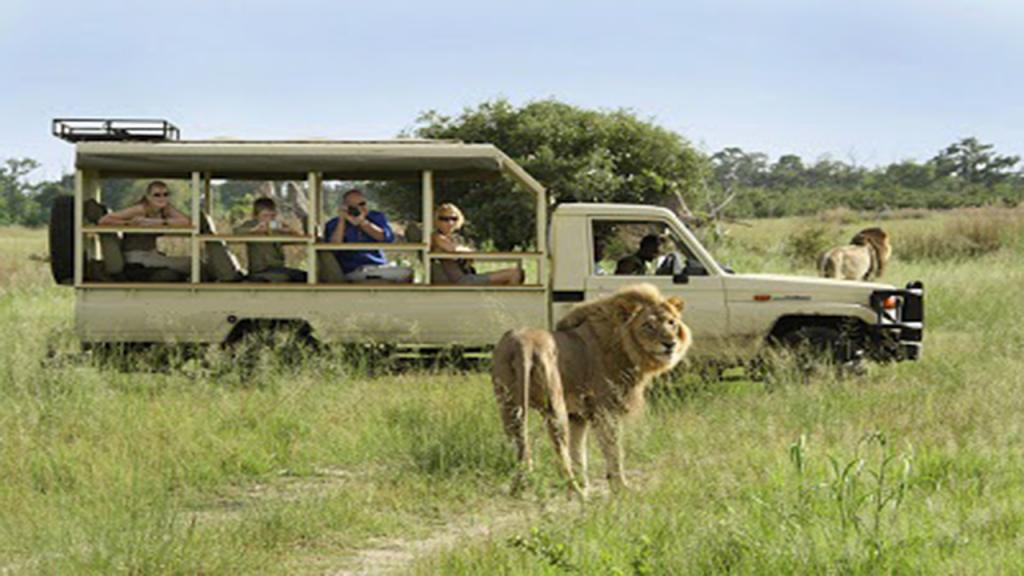 Kalahari-Luxury-Camping-Safari---Open-game-drive-vehicle