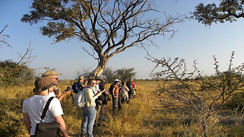 Zimbabwe-&-Botswana-Camping-Safari---Okavango-Delta-Game-Walk