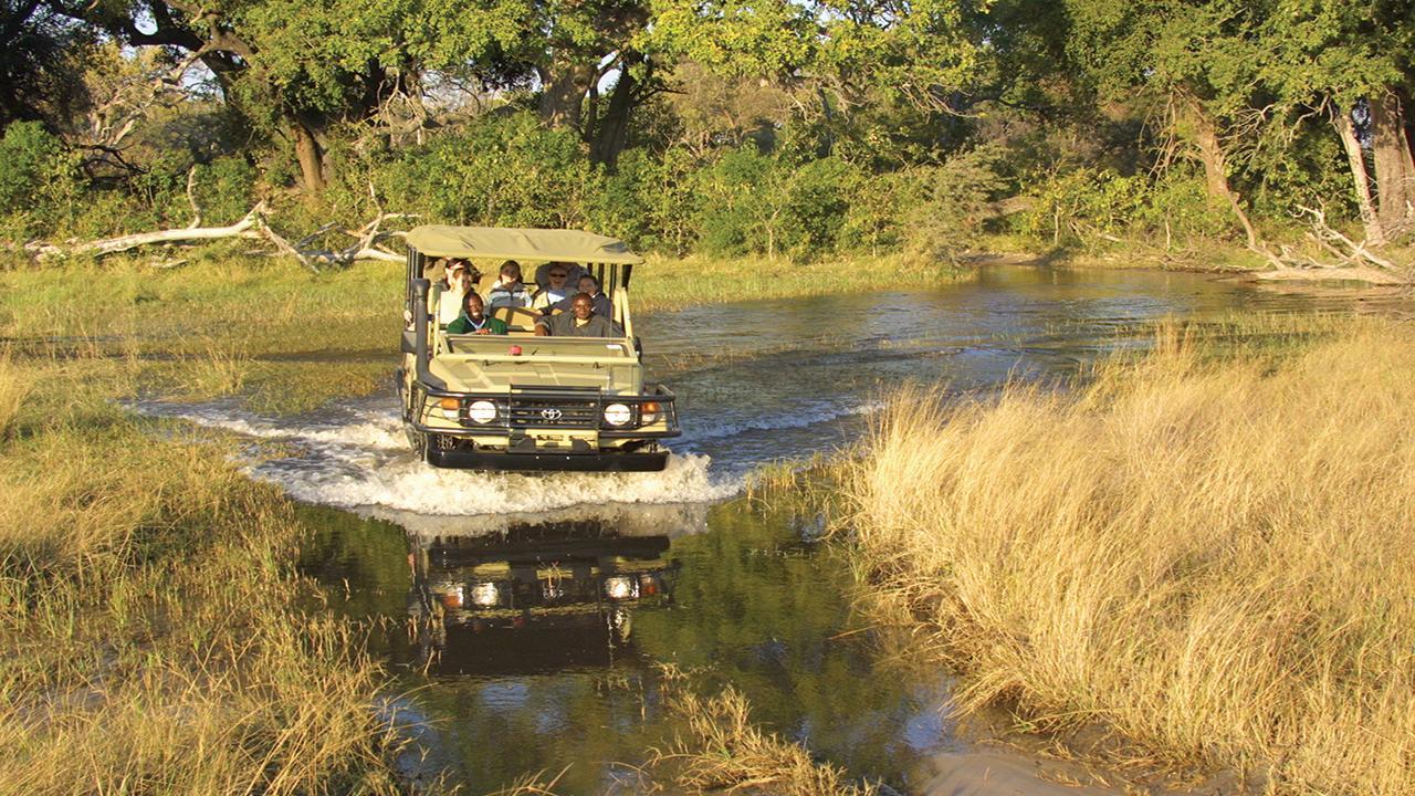 Game-Drive-in-Okavango-Delta---Made-in-Africa-privately-hosted-Botswana-Safari